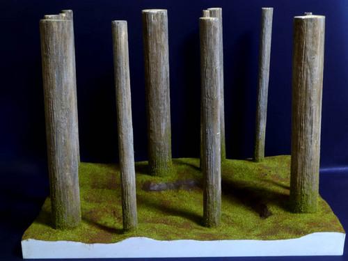 緑の森に.jpg