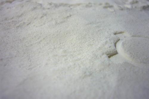 雪に見えるかな.jpg