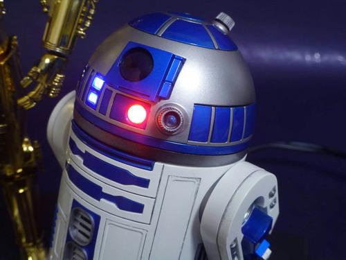 R2頭部アップ.jpg